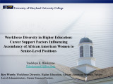 Workforce diversity in higher education: Career support factors influencing ascendancy of African...